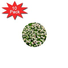Green Field Of White Daisy Flowers 1  Mini Buttons (10 Pack)  by FunnyCow