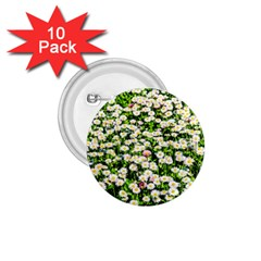 Green Field Of White Daisy Flowers 1 75  Buttons (10 Pack) by FunnyCow