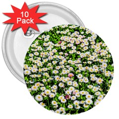 Green Field Of White Daisy Flowers 3  Buttons (10 Pack)  by FunnyCow