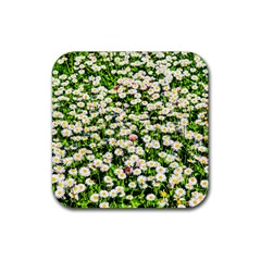 Green Field Of White Daisy Flowers Rubber Square Coaster (4 Pack)  by FunnyCow