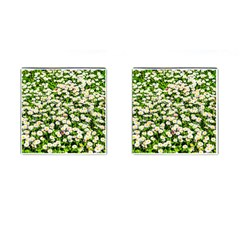 Green Field Of White Daisy Flowers Cufflinks (square) by FunnyCow