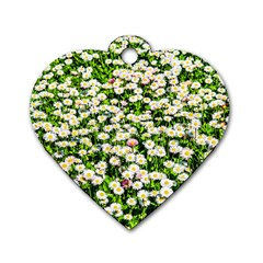 Green Field Of White Daisy Flowers Dog Tag Heart (two Sides) by FunnyCow