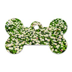 Green Field Of White Daisy Flowers Dog Tag Bone (one Side) by FunnyCow