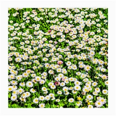 Green Field Of White Daisy Flowers Medium Glasses Cloth (2 Side) by FunnyCow