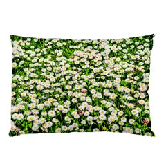 Green Field Of White Daisy Flowers Pillow Case by FunnyCow