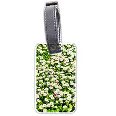 Green Field Of White Daisy Flowers Luggage Tags (two Sides) by FunnyCow