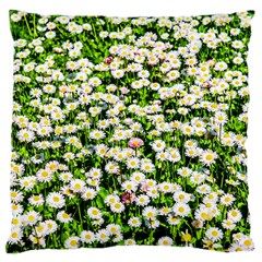 Green Field Of White Daisy Flowers Large Cushion Case (one Side) by FunnyCow