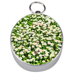 Green Field Of White Daisy Flowers Silver Compasses by FunnyCow