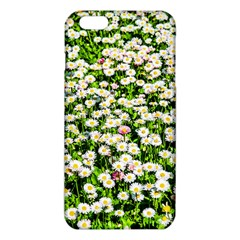 Green Field Of White Daisy Flowers Iphone 6 Plus/6s Plus Tpu Case by FunnyCow