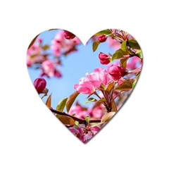 Crab Apple Blossoms Heart Magnet by FunnyCow