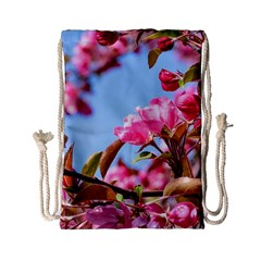 Crab Apple Blossoms Drawstring Bag (small) by FunnyCow