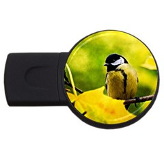 Tomtit Bird Dressed To The Season Usb Flash Drive Round (4 Gb) by FunnyCow