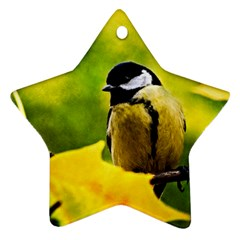 Tomtit Bird Dressed To The Season Star Ornament (two Sides) by FunnyCow