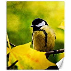 Tomtit Bird Dressed To The Season Canvas 20  X 24   by FunnyCow