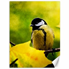 Tomtit Bird Dressed To The Season Canvas 36  X 48   by FunnyCow