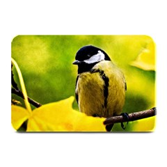 Tomtit Bird Dressed To The Season Plate Mats by FunnyCow
