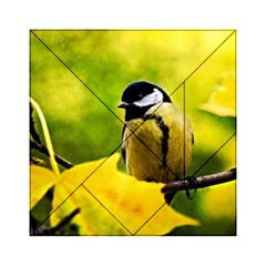 Tomtit Bird Dressed To The Season Acrylic Tangram Puzzle (6  X 6 ) by FunnyCow