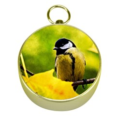 Tomtit Bird Dressed To The Season Gold Compasses by FunnyCow