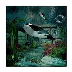 Wonderful Orca In Deep Underwater World Face Towel by FantasyWorld7
