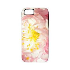 Pink Flowering Almond Flowers Apple Iphone 5 Classic Hardshell Case (pc+silicone) by FunnyCow