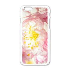 Pink Flowering Almond Flowers Apple Iphone 6/6s White Enamel Case by FunnyCow