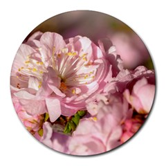 Beautiful Flowering Almond Round Mousepads by FunnyCow