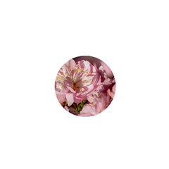 Beautiful Flowering Almond 1  Mini Buttons by FunnyCow