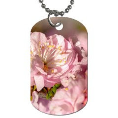 Beautiful Flowering Almond Dog Tag (two Sides) by FunnyCow