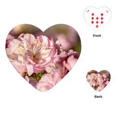 Beautiful Flowering Almond Playing Cards (heart)  by FunnyCow