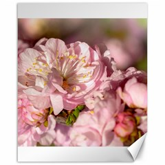 Beautiful Flowering Almond Canvas 16  X 20   by FunnyCow