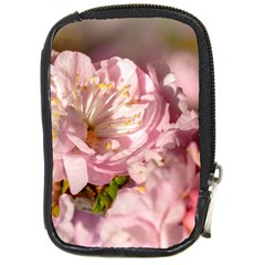 Beautiful Flowering Almond Compact Camera Cases by FunnyCow