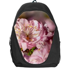 Beautiful Flowering Almond Backpack Bag by FunnyCow