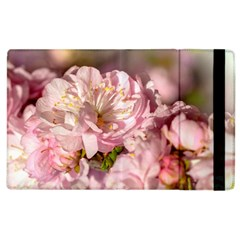 Beautiful Flowering Almond Apple Ipad 3/4 Flip Case by FunnyCow