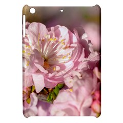 Beautiful Flowering Almond Apple Ipad Mini Hardshell Case by FunnyCow