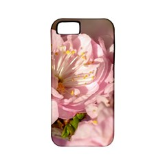Beautiful Flowering Almond Apple Iphone 5 Classic Hardshell Case (pc+silicone) by FunnyCow
