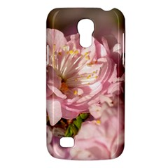 Beautiful Flowering Almond Samsung Galaxy S4 Mini (gt I9190) Hardshell Case  by FunnyCow