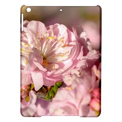 Beautiful Flowering Almond Ipad Air Hardshell Cases by FunnyCow