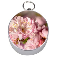 Beautiful Flowering Almond Silver Compasses by FunnyCow