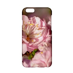 Beautiful Flowering Almond Apple Iphone 6/6s Hardshell Case by FunnyCow