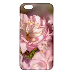 Beautiful Flowering Almond Iphone 6 Plus/6s Plus Tpu Case by FunnyCow