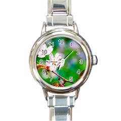 Sakura Flowers On Green Round Italian Charm Watch by FunnyCow