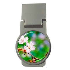 Sakura Flowers On Green Money Clips (round)  by FunnyCow