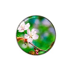 Sakura Flowers On Green Hat Clip Ball Marker (10 Pack) by FunnyCow