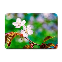 Sakura Flowers On Green Small Doormat  by FunnyCow