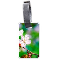 Sakura Flowers On Green Luggage Tags (one Side)  by FunnyCow