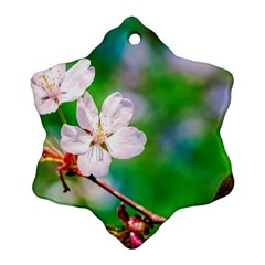 Sakura Flowers On Green Snowflake Ornament (two Sides) by FunnyCow