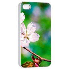 Sakura Flowers On Green Apple Iphone 4/4s Seamless Case (white) by FunnyCow