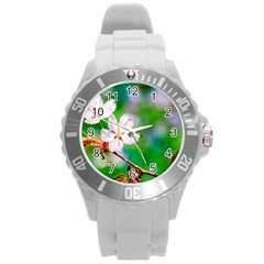 Sakura Flowers On Green Round Plastic Sport Watch (l) by FunnyCow