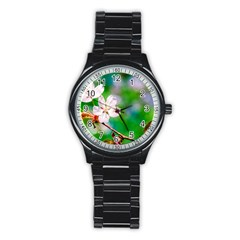 Sakura Flowers On Green Stainless Steel Round Watch by FunnyCow