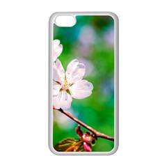 Sakura Flowers On Green Apple Iphone 5c Seamless Case (white) by FunnyCow